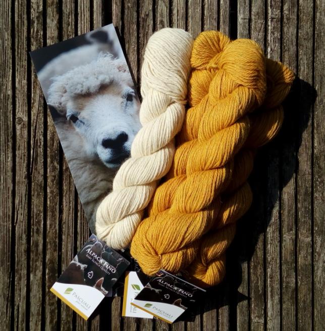 Pascuali - Alpaca Fino - Sonnengelb - naturweiß